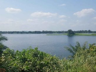 15,000+ Acres Of Farmland For Lease In Akuse, Eastern Region